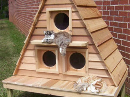 Plans for Outdoor Winter Cat Houses Outdoor Cat House Plans