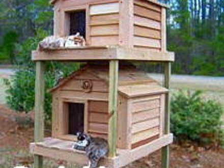 Outdoor Cat House Best Cat Houses for Winter