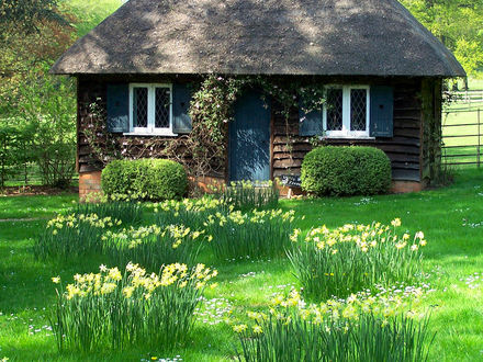 Small Cottage House Tiny Romantic Cottage House Plan