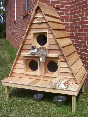 Outdoor Cat House Plans Elevated Outdoor Cat House