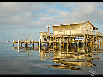 Stilt Homes On the Gulf of Mexico Pictures River House On Stilts Plans