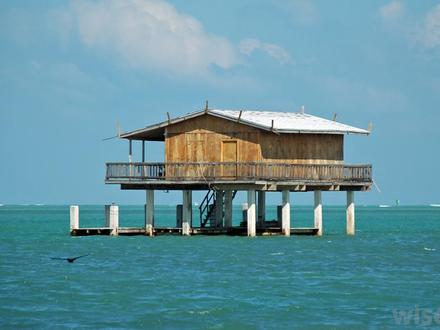 Modern Stilt House House On Stilts