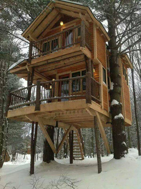 Two Story Tree House Tree Houses For Adults Two Story Log