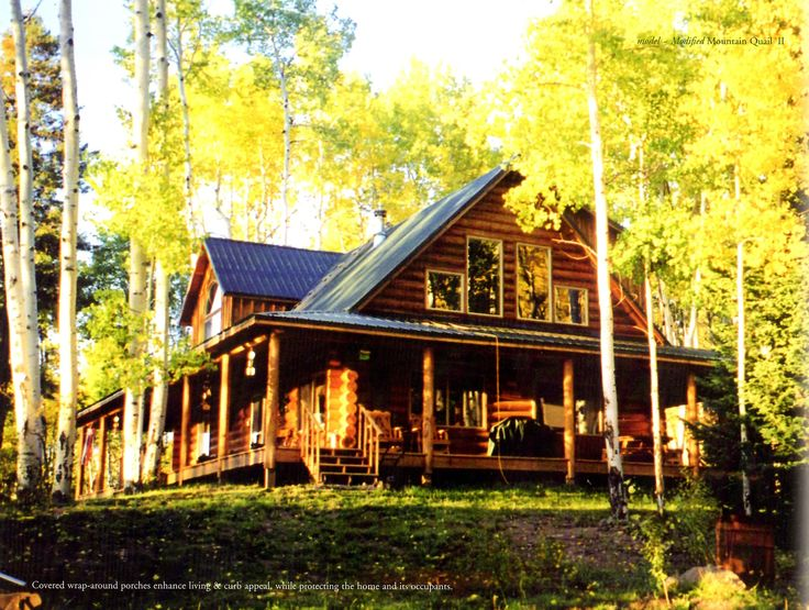 Extremely large log homes extreme log cabin homes extreme for Large log cabin homes