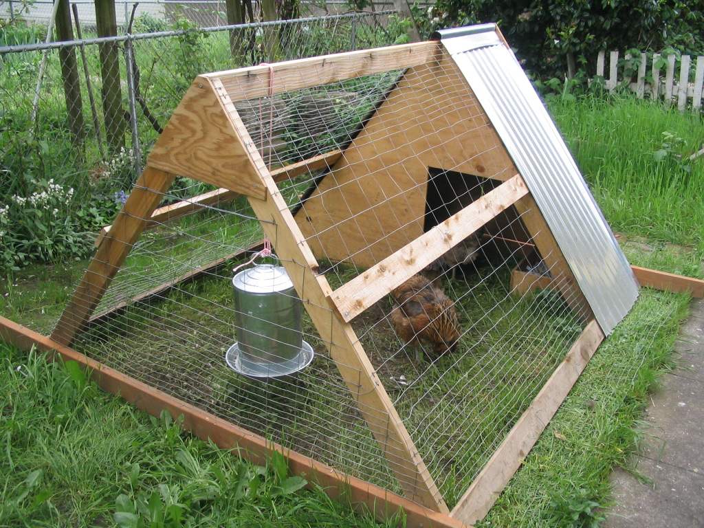Tiny House Plans Do It Yourself: Small Chicken Co Op Plans Chicken Houses, Simple House
