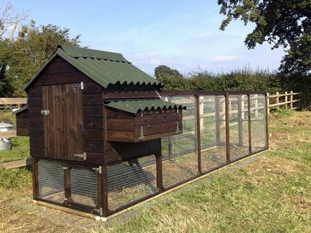 Chicken Co op & Run Chicken Coops for 12 Chickens