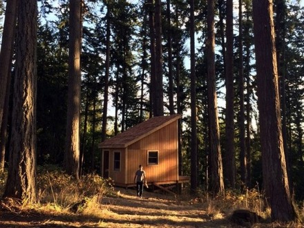 Build-A- Bear Friends Build a 200 Sq Ft Tiny Cabin in 6 Days for $6K